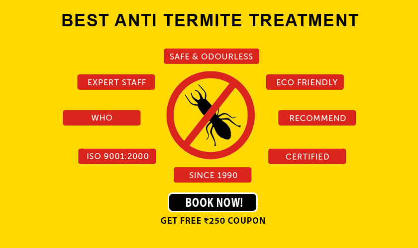 Termite Control Savings - Free Coupon Worth Rs.250